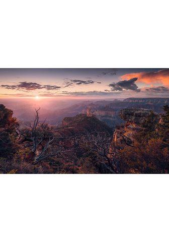 KOMAR Фотообои »Grand View«...