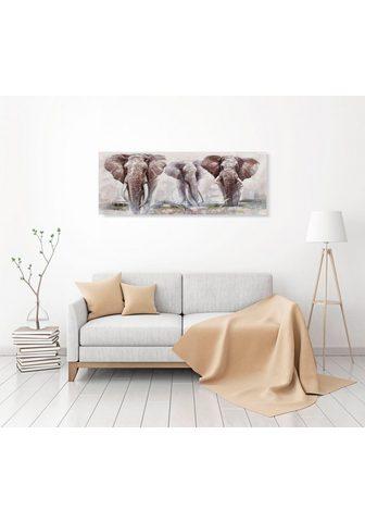 Aliejinis paveikslas »Elephant«