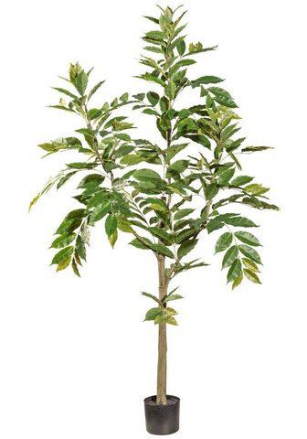 GASPER Dirbtinis augalas »Himmelsbambus«