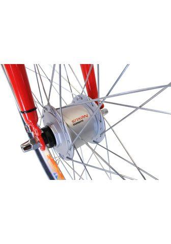 HAWK BIKES Jaunimo dviratis »HAWK vaikiškas dvira...