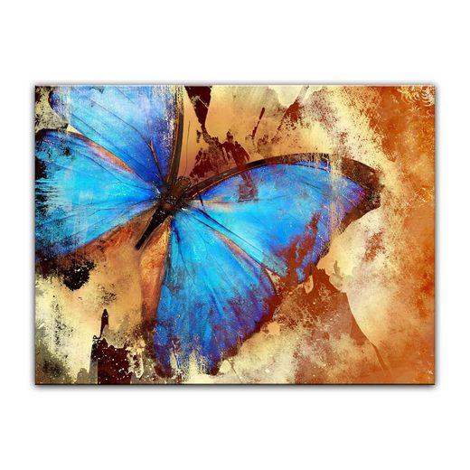 Bilderdepot24 Leinwandbild, Leinwandbild - Schmetterling