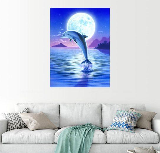 Posterlounge Wandbild, Day of the dolphin - midnight