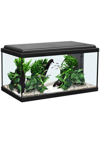 Aquatlantis Akvariumas »Advance 60 LED« BxTxH: 60x...