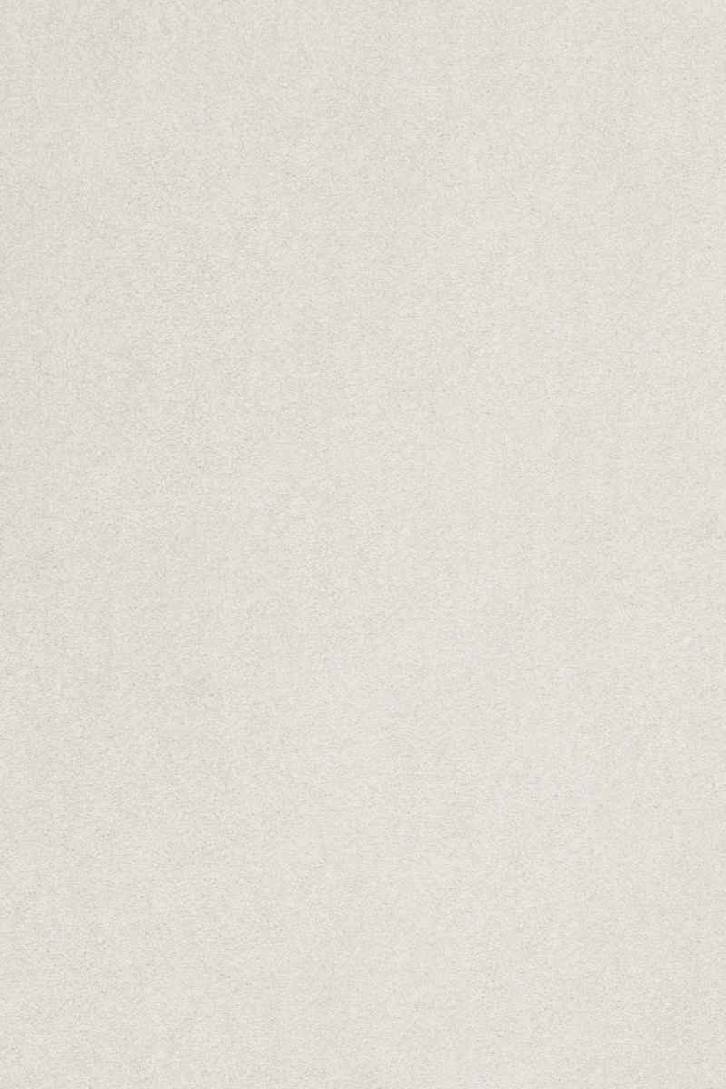 Teppichboden »Proteus«, Sedna, rechteckig, Höhe 12 mm