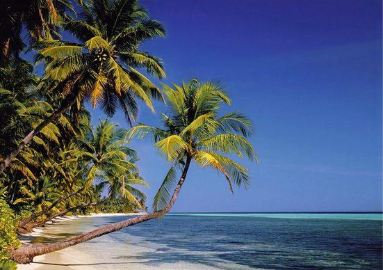 Fototapete »Palmenstrand«, glatt