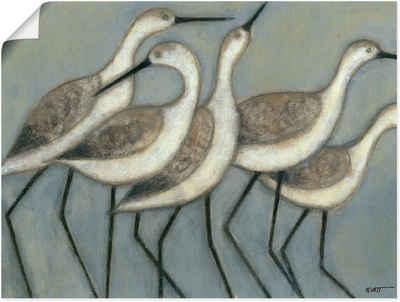 Artland Wandbild »Küstenvögel II«, Vögel (1 Stück), in vielen Größen & Produktarten - Alubild / Outdoorbild für den Außenbereich, Leinwandbild, Poster, Wandaufkleber / Wandtattoo auch für Badezimmer geeignet