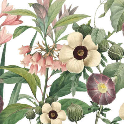 anna wand Bordüre »Wildblumen rosa/grün auf weiß«, selbstklebend