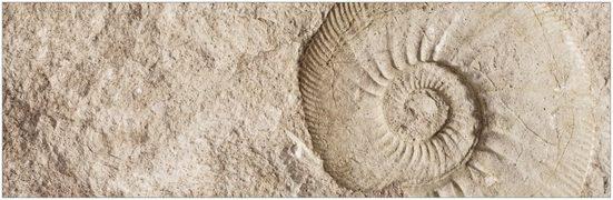 MYSPOTTI Badrückwand »mySPOTTI aqua Fossil«, Höhe: 45 cm