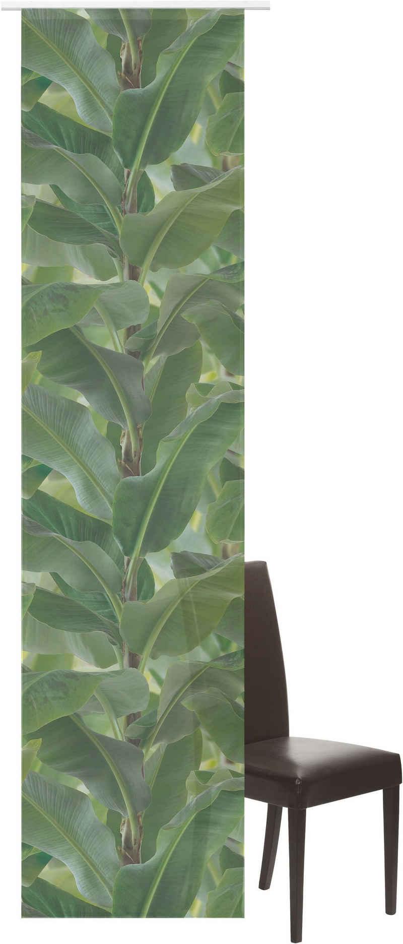 Schiebegardine »Banana-Tree«, ELBERSDRUCKE, Klettband (1 Stück), Schiebevorhang mit Klettband Banana-Tree 03 grün 245x60 cm halbtransparent Digitaldruck