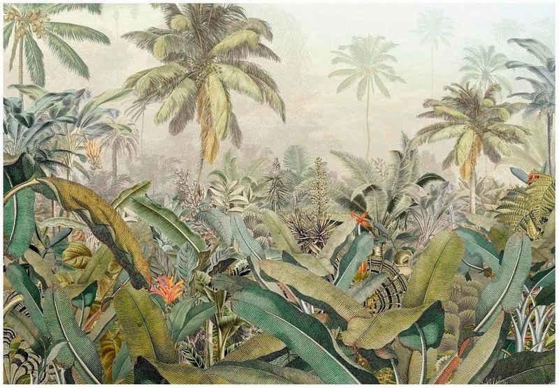 Komar Vliestapete »Amazonia 4er«, glatt, naturalistisch