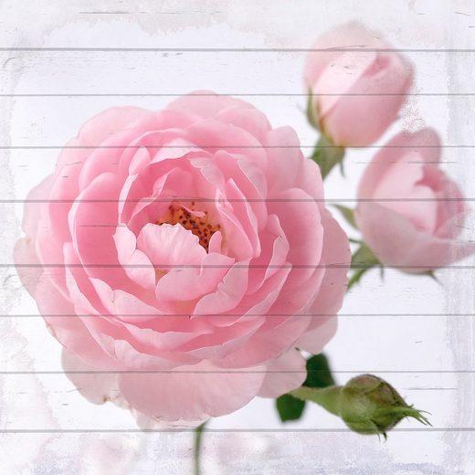 QUEENCE Holzbild »Pinke Blüte«, 40x40 cm Echtholz