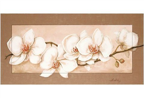 Kunstdruck, Home affaire, »Andres: Orchideenzweig«, 102/52 cm in weiß