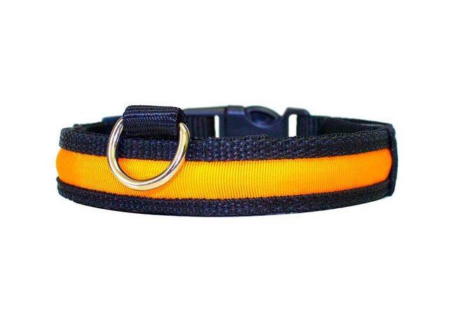 PRECORN Hunde-Halsband »Hunde Leuchthalsband LED Halsband Hundehalsband Hunde-Halsband Zandoo Leuchthalsband inkl. Batterie für Hunde Katzen Haustiere in der Farbe orange (Größe M oder L)« | Garten > Tiermöbel > Katzenkörbe | PRECORN