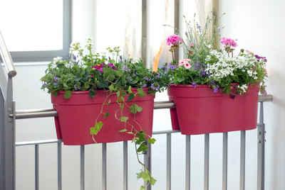 KHW Balkonkasten »Flowerclip XL« (Set, 2 Stück), BxcTxH: 58x27x28 cm