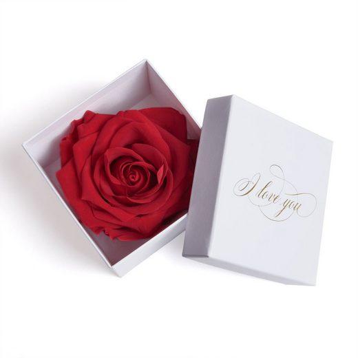 ROSEMARIE SCHULZ Heidelberg Schmucketui »Infinity Rose in Box weiß I LOVE YOU Geschenk Frauen Liebesbeweis Valentinstag«, Rose haltbar bis zu 3 Jahre