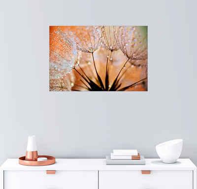 Posterlounge Wandbild, Pusteblume orange Light