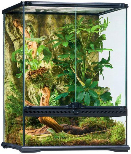 Exo Terra Terrarium, BxTxH: 45x45x60 cm