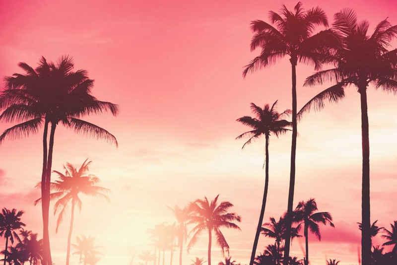 queence Acrylglasbild »Palmen im Sonnenuntergang«