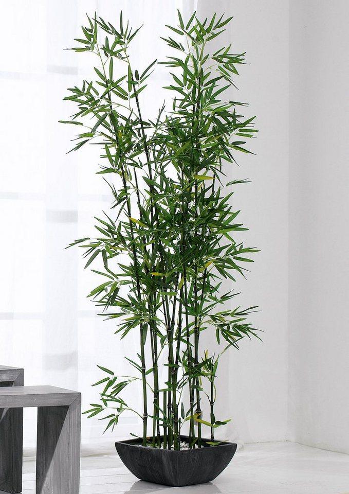 Home affaire Kunstpflanze »Bambus« im Terrakottatopf in grün