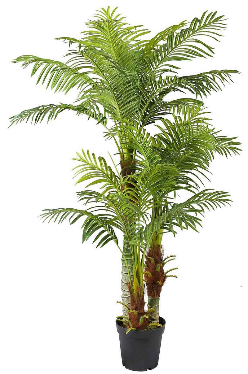 Kunstpalme »Palme KP103 mit 3 Stämmen« Palme 180cm Hoch, Arnusa, Höhe 180 cm, künstliche Pflanze groß fertig im Topf