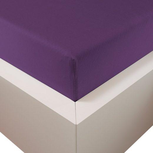 Spannbettlaken »Premium Plus«, Traumschloss, 260g/m², 47,5% Mako Baumwolle, 47,5% Lyocell, 5% Elasthan