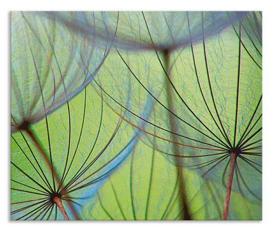 Artland Küchenrückwand »Pusteblumen-Samen II«, (1-tlg)