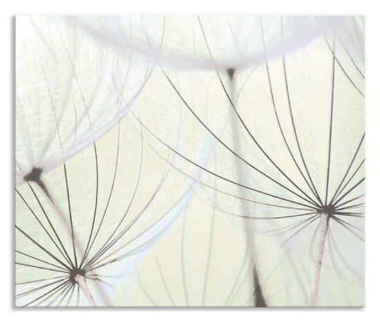Artland Küchenrückwand »Pusteblumen-Samen aufgehellt«, (1-tlg)