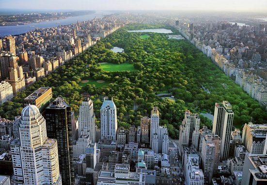 Fototapete »Central Park«, 8-teilig, 366x254 cm