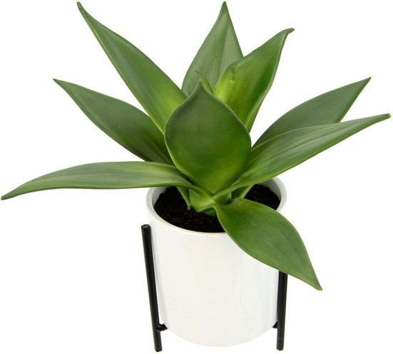 Kunstpflanze »Sukkulente«, I.GE.A., Höhe 29 cm, Im Topf mit Gestell