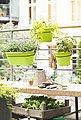 Emsa Set: Blumenkasten »CITY Hängetopf«, BxTxH: 20x26x17,6 cm, 40,1x26x17,6 cm, grün, Bild 2