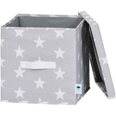 STORE IT! Aufbewahrungsbox »Ordnungsbox mit Deckel, rosa Chevron«