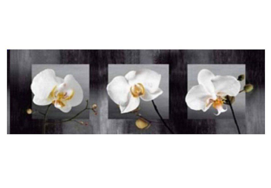 Wandbild »Blütentraum«