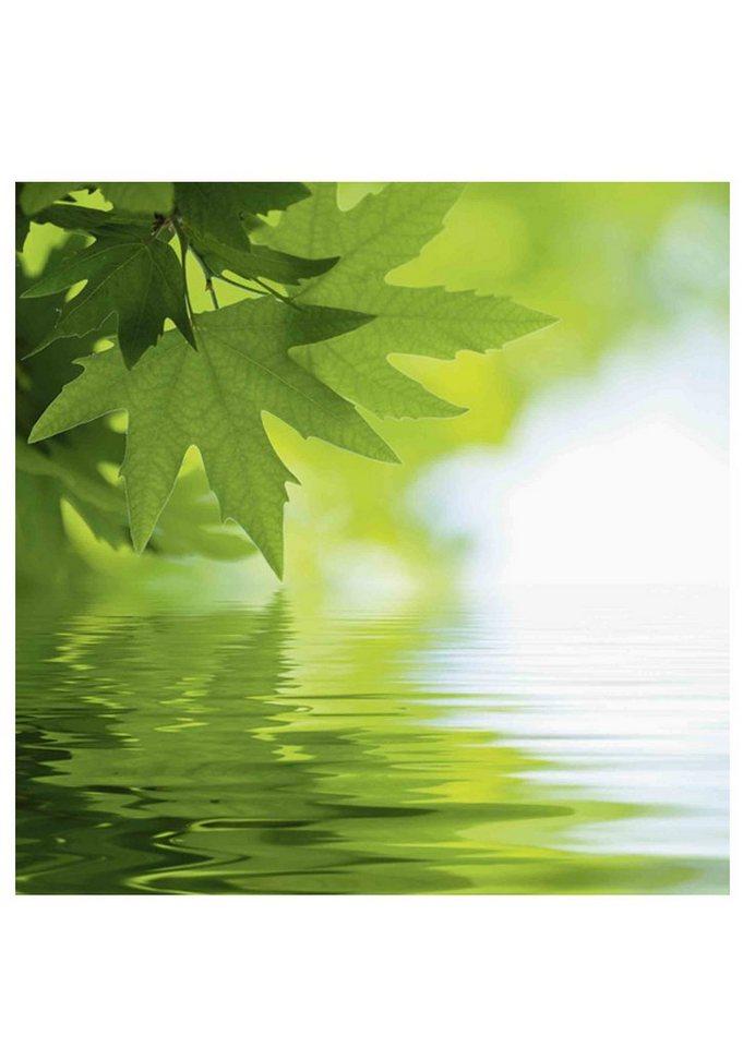 Home affaire Glasbilder in 2 Größen und 3 Motiven »Wasserspiele« in grün