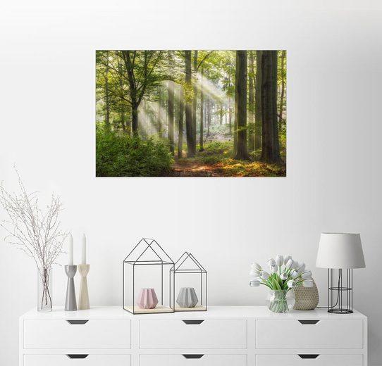 Posterlounge Wandbild, Wege zur Entspannung