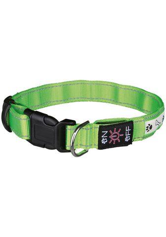 TRIXIE šuns antkaklis »USB Flash« Polyester i...