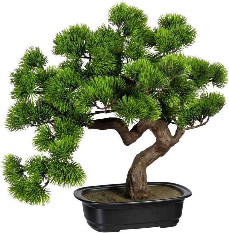 Kunstbonsai »Bonsai Kiefer« Bonsai Kiefer, Creativ green, Höhe 40 cm, in Schale