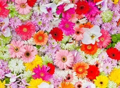 """Platzset, »Tischset I Platzset - Blumen - """"Buntes Blumenmeer"""" - 12 Stück aus hochwertigem Papier in Aufbewahrungsmappe, perfekt für die Frühlingsdekoration«, Tischsetmacher, (12-St)"""
