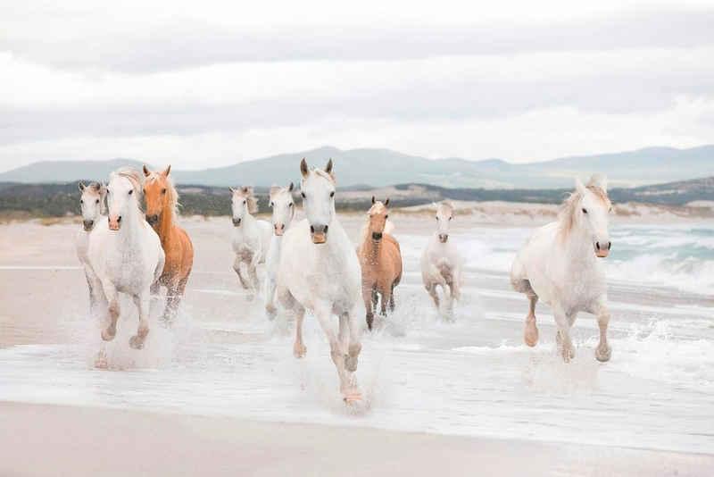 Komar Fototapete »White Horses«, glatt, bedruckt, Meer, (Set), ausgezeichnet lichtbeständig