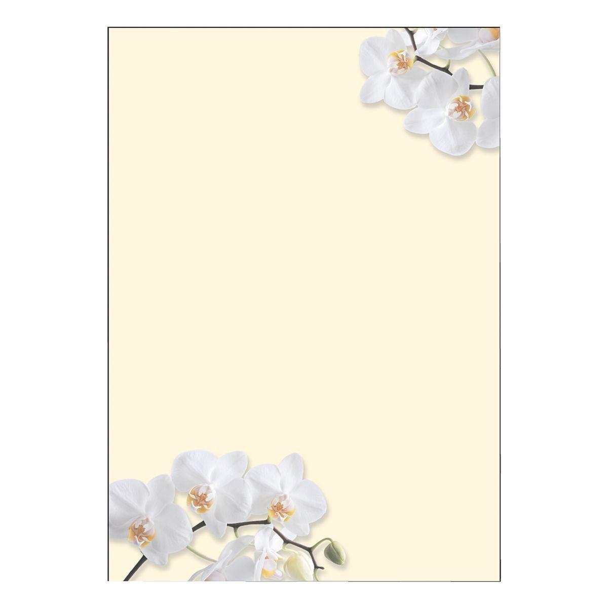 Sigel Motivpapier »White Orchid«
