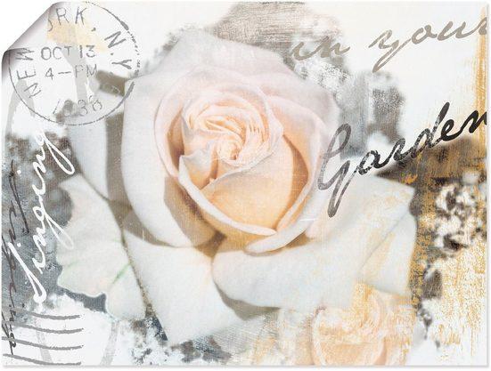 Artland Wandbild »In Buchstaben - Rose«, Blumen (1 Stück), in vielen Größen & Produktarten - Alubild / Outdoorbild für den Außenbereich, Leinwandbild, Poster, Wandaufkleber / Wandtattoo auch für Badezimmer geeignet