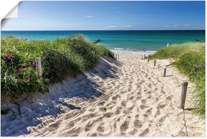 Artland Wandbild »Weg zum Strand an der Ostsee«, Strandbilder (1 Stück), in vielen Größen & Produktarten - Alubild / Outdoorbild für den Außenbereich, Leinwandbild, Poster, Wandaufkleber / Wandtattoo auch für Badezimmer geeignet