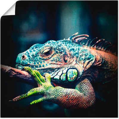 Artland Wandbild »Leguan«, Reptilien (1 Stück), in vielen Größen & Produktarten -Leinwandbild, Poster, Wandaufkleber / Wandtattoo auch für Badezimmer geeignet