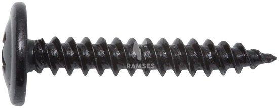 RAMSES Blechschraube, (Set, 100 St), 4,2 x 13 mm