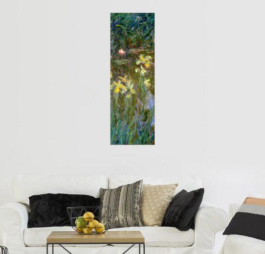 Posterlounge Wandbild, Narzissen im Feld