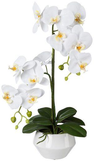 Kunstpflanze »Orchidee Phalenopsis«, im Keramiktopf, H: 52 cm