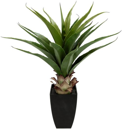 Kunstpflanze »Agave im Topf« Agave, I.GE.A., Höhe 75 cm
