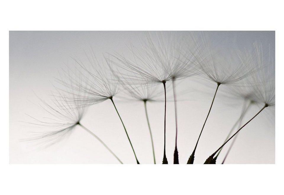 Glasbild, Home affaire, »Schönebilder«, 100/50 cm in grau