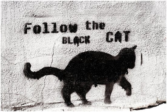 Art & Pleasure Acrylglasbild »Follow the black cat«, Katzen