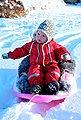 STIGA Sports Schlitten »Snow Cruiser Pink«, BxL: 53x67 cm, Bild 2