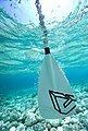 Aqua Marina »Solid Paddle Fiberglass 3 teilig Stand-Up Paddel« SUP-Paddel, Bild 5